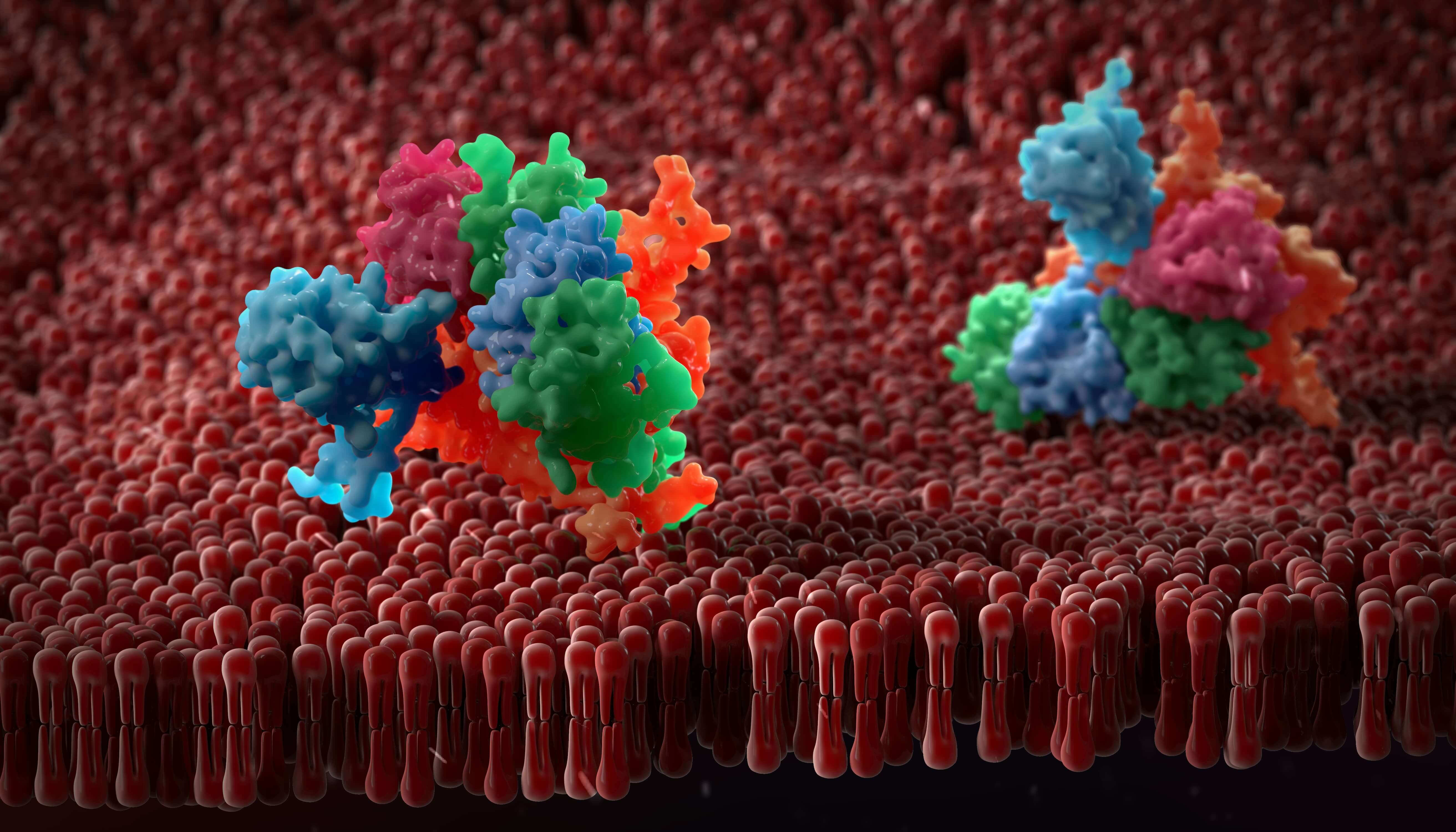 Tech Showcase: Improving Membrane Protein Expression