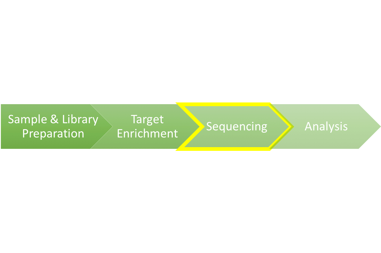 Sequencing workflow image